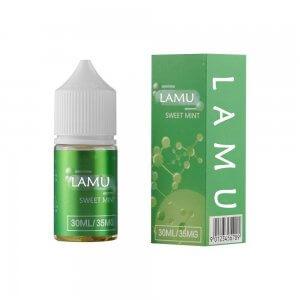 35mg Mint Nicotine Salt E Juice for Disposable Vape